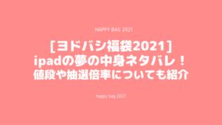 [ヨドバシ福袋2021]ipadの夢の中身ネタバレ!値段や抽選倍率についても
