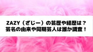 zazy(さじー)経歴と芸歴