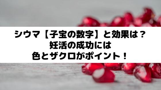 シウマ【子宝の数字】と効果は?妊活の成功には色とザクロがポイント!