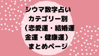シウマ数字占いカテゴリー別(恋愛運・結婚運・金運・健康運)まとめページ