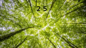 シウマの数字6の意味!待ち受けに設定すべき守護ナンバーと方位も紹介